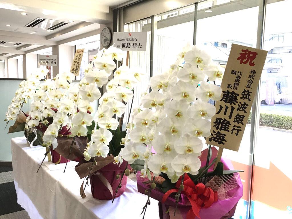 当日、たくさんのお祝い花を頂戴いたしました。ありがとうございます。
